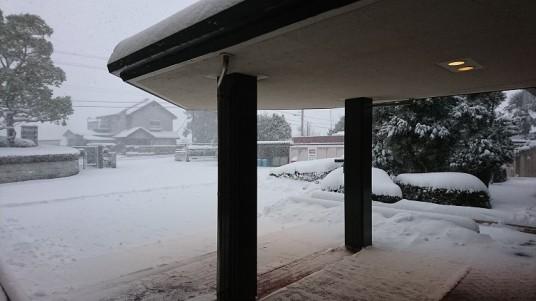 1月びわ湖スキー